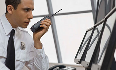 Curso de Jefe de Seguridad Online