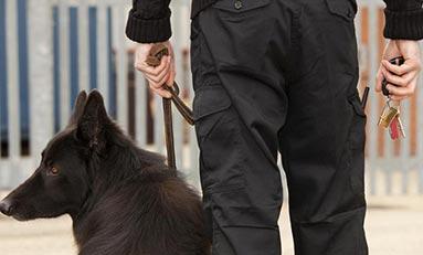 Técnico Superior en Seguridad Privada con Unidad Canina