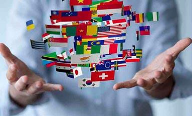 MF0985_2: Lengua extranjera profesional distinta del inglés para la asistencia a la dirección